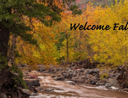 Fall – and the Weather is Perfect in Sedona